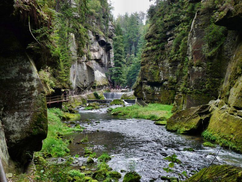 Suiza Bohemia